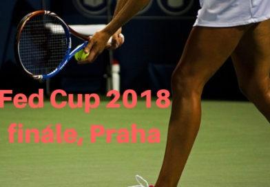 Finále FED cup 2018